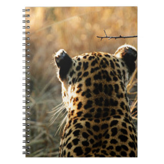 Leopard Looking Off Into Distance Notebook
