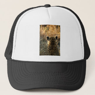 Leopard Looking Off Into Distance Trucker Hat