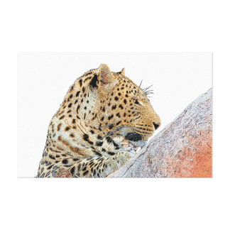 Leopard looking sideways canvas print