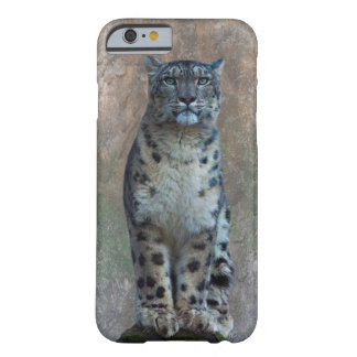 Leopard Lookout iPhone 6 Case
