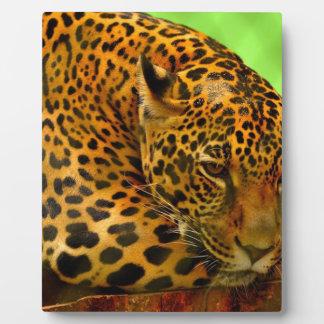 Leopard on Brown Log Plaque