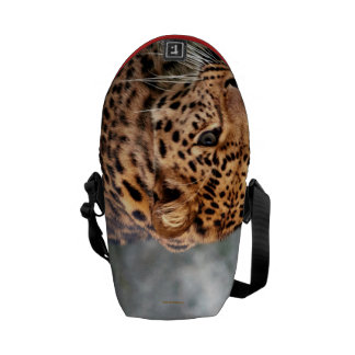 Leopard on the Prowl Cool Animal Pattern 2013 Commuter Bags