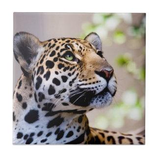 Leopard Photograph Ceramic Tile