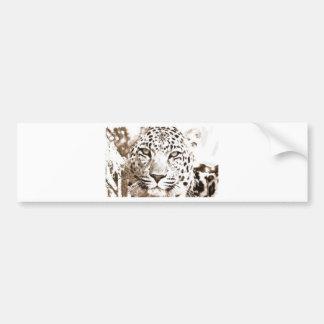 Leopard Portrait Bumper Sticker