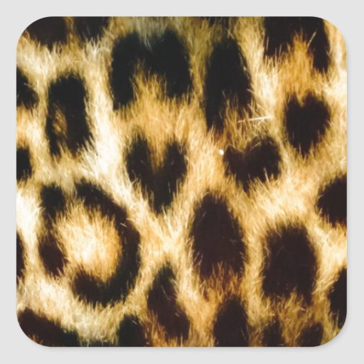 Leopard print square sticker