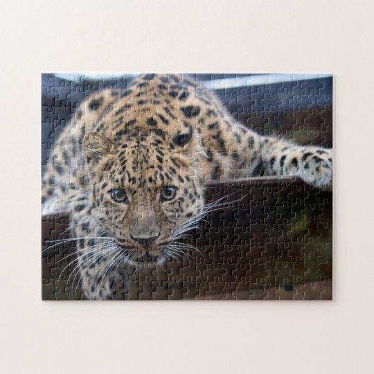"""Leopard Puzzle 11"""" x 14"""" 252 Piece"""