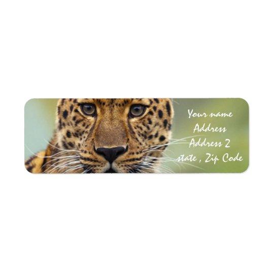 Leopard Return Address Label