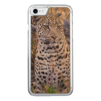 Leopard sitting, Botswana, Africa Carved iPhone 7 Case