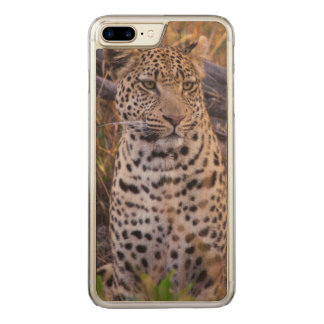 Leopard sitting, Botswana, Africa Carved iPhone 8 Plus/7 Plus Case