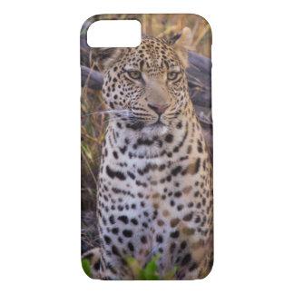 Leopard sitting, Botswana, Africa iPhone 7 Case