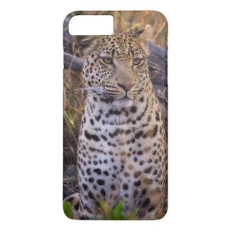 Leopard sitting, Botswana, Africa iPhone 7 Plus Case