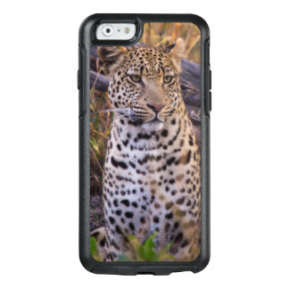 Leopard sitting, Botswana, Africa OtterBox iPhone 6/6s Case