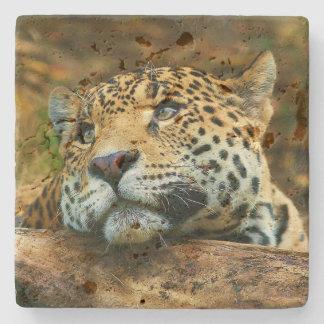 Leopard Stone Coaster