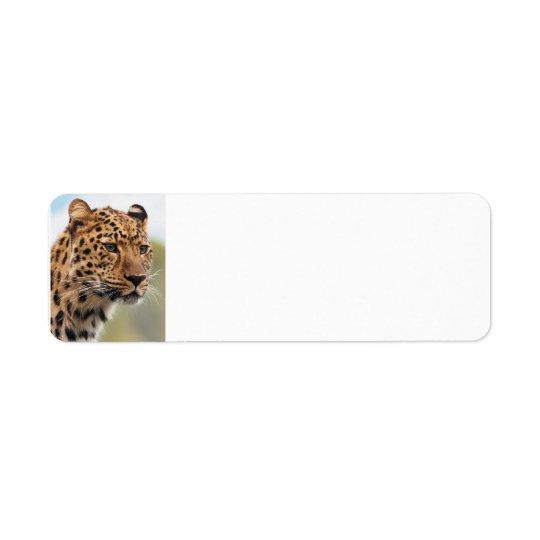 Leopard Wild Cats Return Address Label