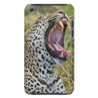 Leopard yawning, Greater Kruger National Park, 2 iPod Touch Cover
