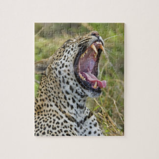 Leopard yawning, Greater Kruger National Park, 2 Jigsaw Puzzle