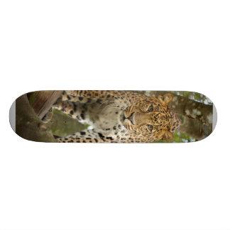 LeopardCheetaro004 Skate Board