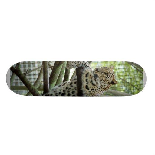 LeopardSundari_006 Skateboard Decks