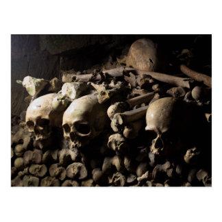Les Catacombes Postcard