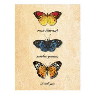 Les Papillons Thank You Postcard