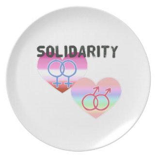 Lesbian Gay Solidarity Plate