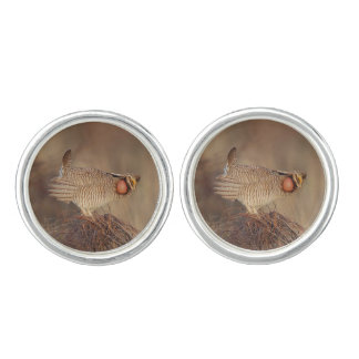Lesser Prairie Chicken lek Milnesand, New Mexico Cuff Links