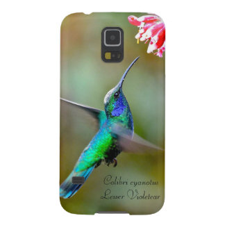Lesser Violetear Galaxy S5 Cover