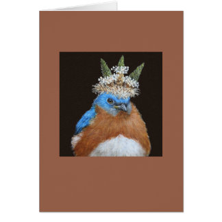 Lester the grumpy, bossy bluebird card