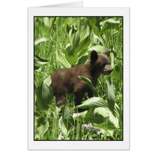 Let Bears Be Bears Card