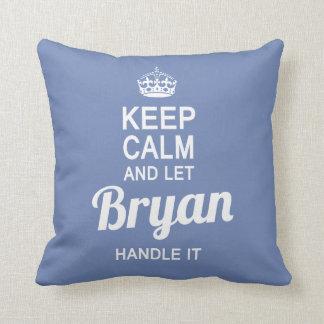 Let Bryan handle it! Cushion