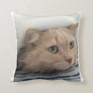 Let Holly comfort you Cushion