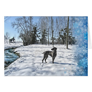Let it Snow, Let it Snow, Let it Snow Card