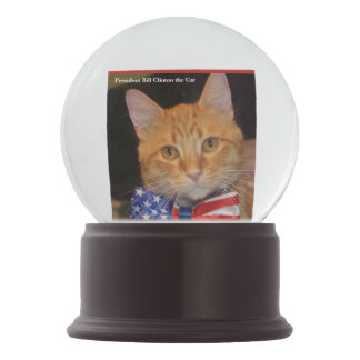 Let it Snow with President Bill Clinton the Cat! Snow Globe