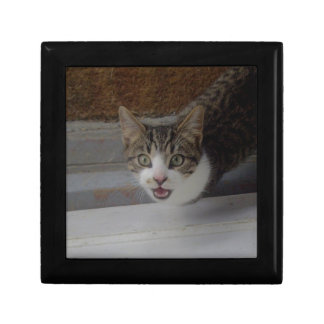 Let Me In Small Square Gift Box