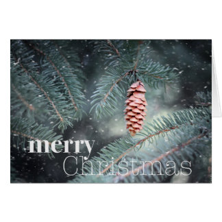 Let Nature Sing Merry Christmas (card) Card