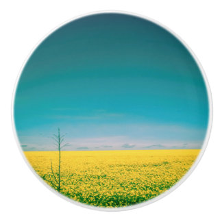Let's go wait out in the fields ceramic knob
