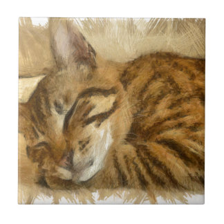 Let Sleeping Cats Lie Ceramic Tile