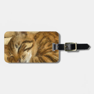 Let Sleeping Cats Lie Luggage Tag