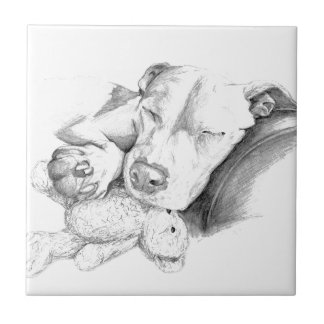 Let Sleeping Dogs Lie Small Square Tile