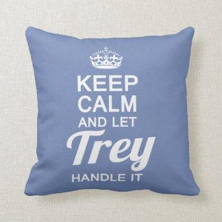 Let TREY Handle It Cushion