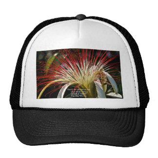 Let your true colors shine! mesh hats