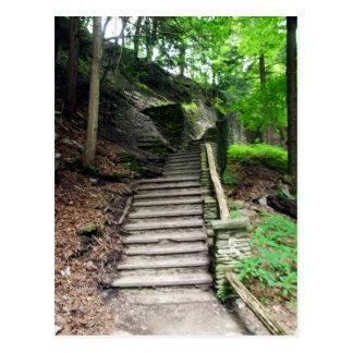 Letchworth State Park Stone Stairs To Waterfalls Postcard