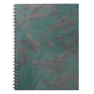Let's go fishing!!! notebook