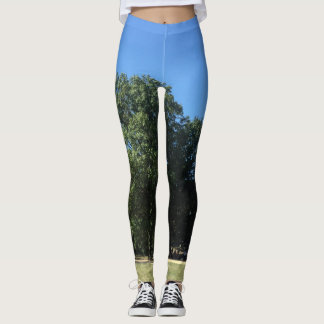 """lets go to the park"" tights"