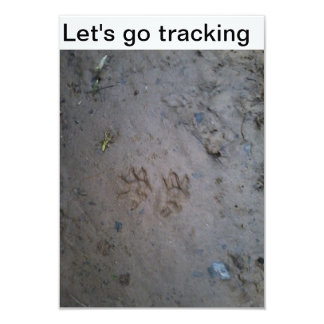 Let's go tracking invitation card