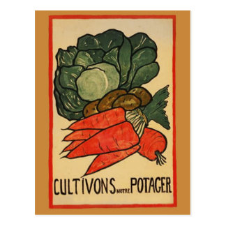 Let's Grow a Vegetable Garden Postcard
