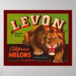 Levon California Melons Print
