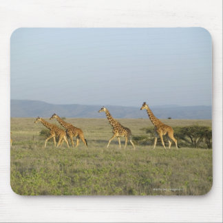 Lewa Wildlife Conservancy, Kenya Mouse Pad