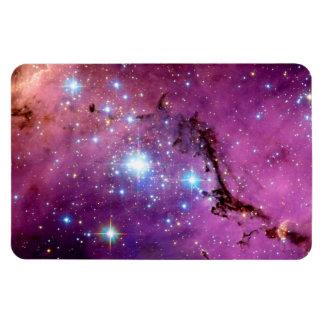 LHA 120-N11 Star Formation Rectangular Photo Magnet