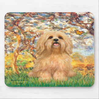 Lhasa Apso 9 - Spring Mouse Mats
